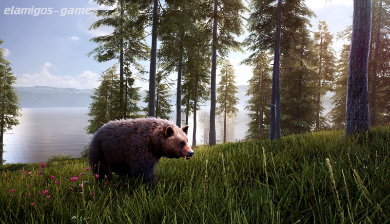 Download Hunting Simulator 2 Bear Hunter Edition