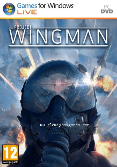 Download Project Wingman