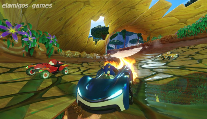 Download Team Sonic Racing