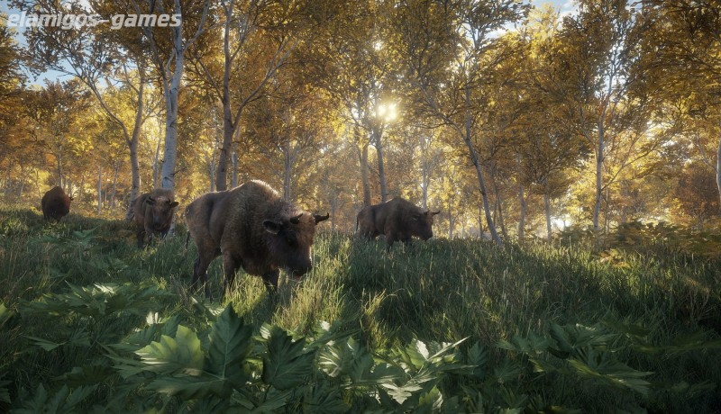 Download theHunter Call of the Wild