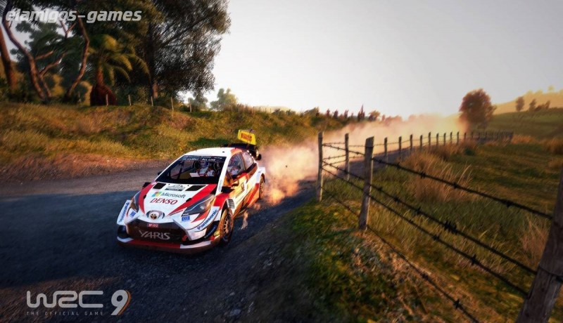 Download WRC 9: FIA World Rally Championship